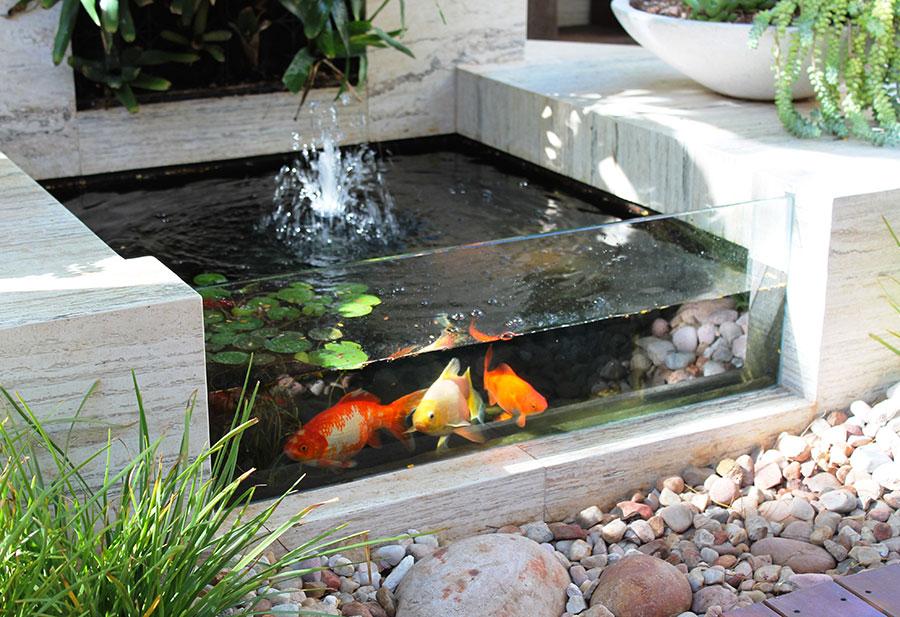 Come creare un laghetto koi in casa o in giardino 20 idee for Prodotti per laghetto da giardino