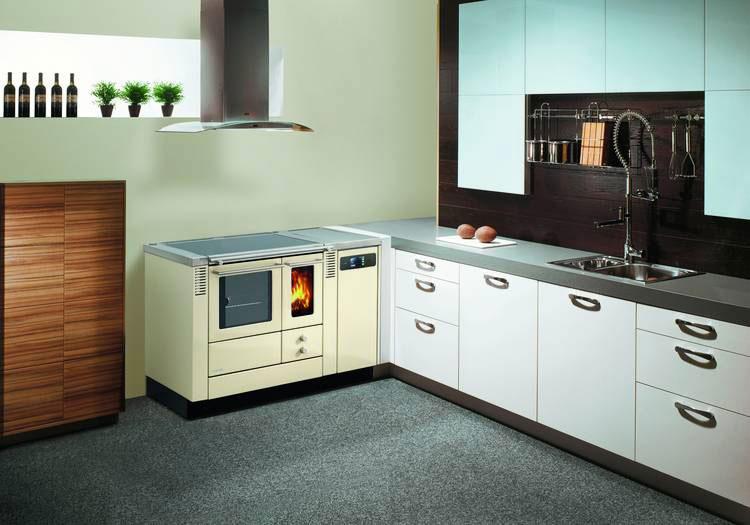 Modello di cucina a legna con forno integrato n.04