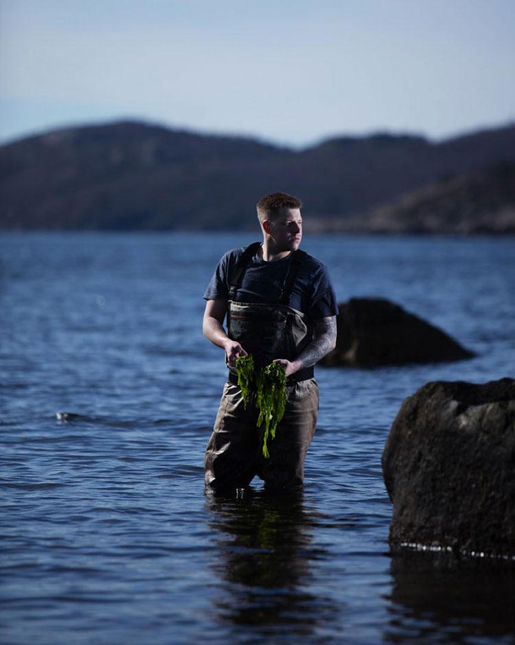 Foto del menù del ristorante subacqueo Under in Norvegia n.2