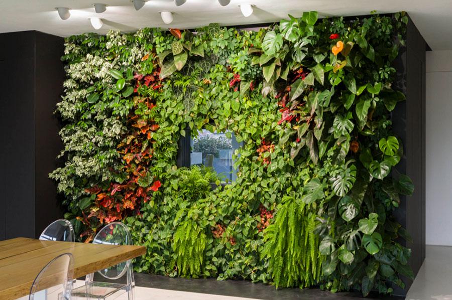 Foto di giardino verticale per interno n.27