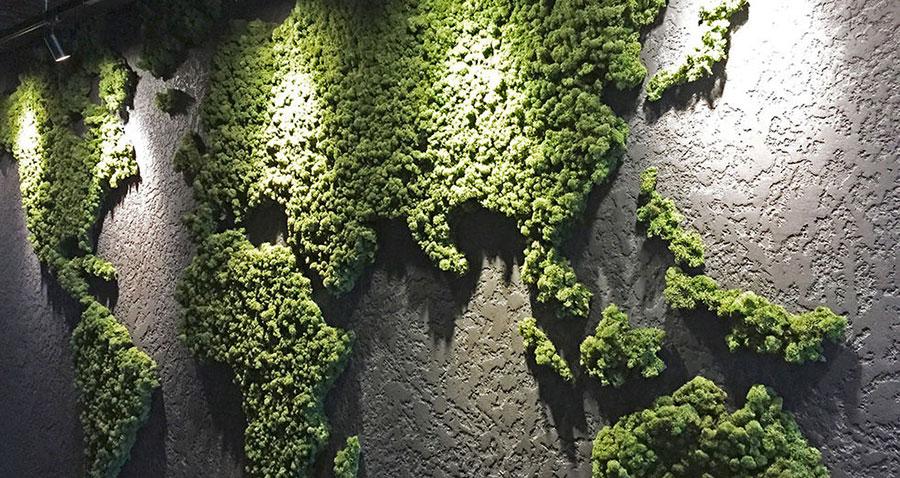 Foto di giardino verticale per interno n.31