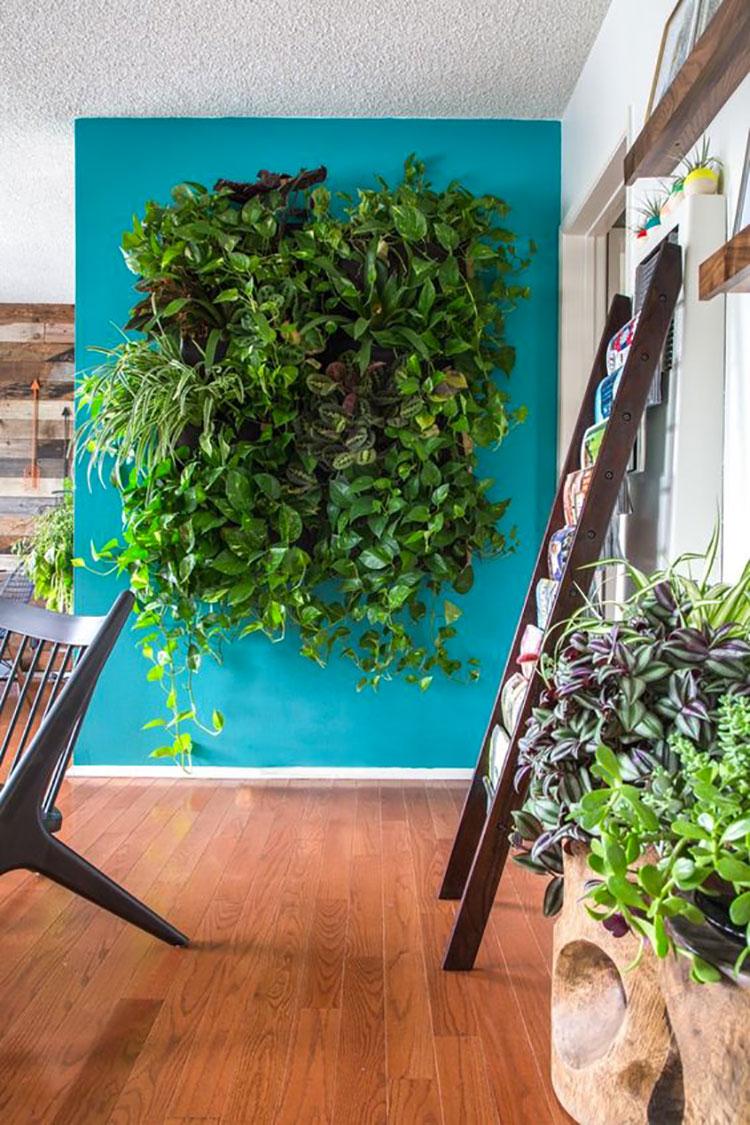 Foto di giardino verticale per interno n.03