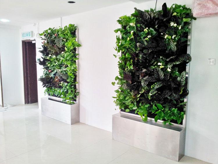 Foto di giardino verticale per interno n.09