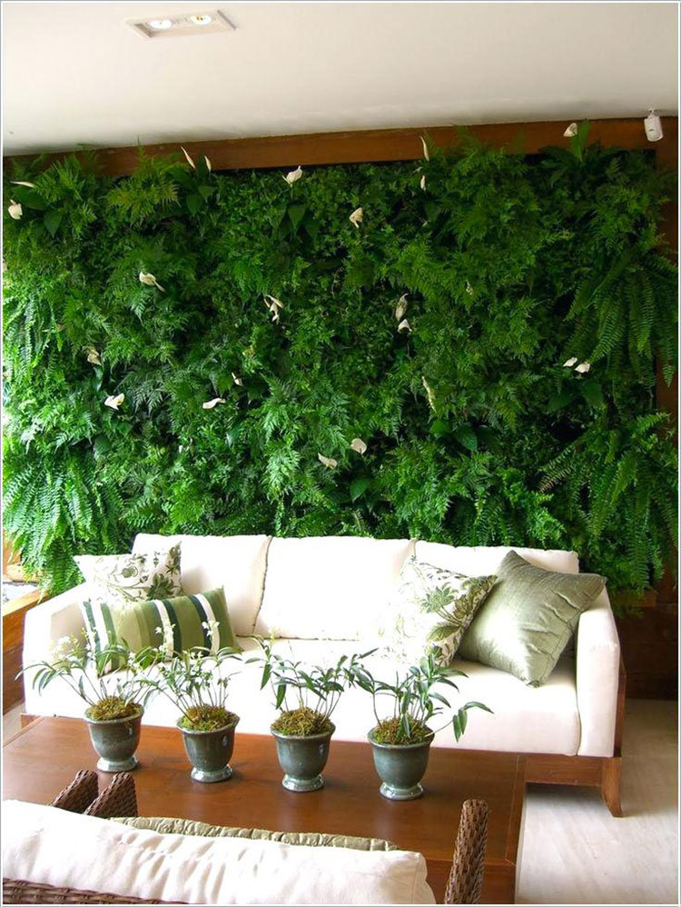 Foto di giardino verticale per interno n.20
