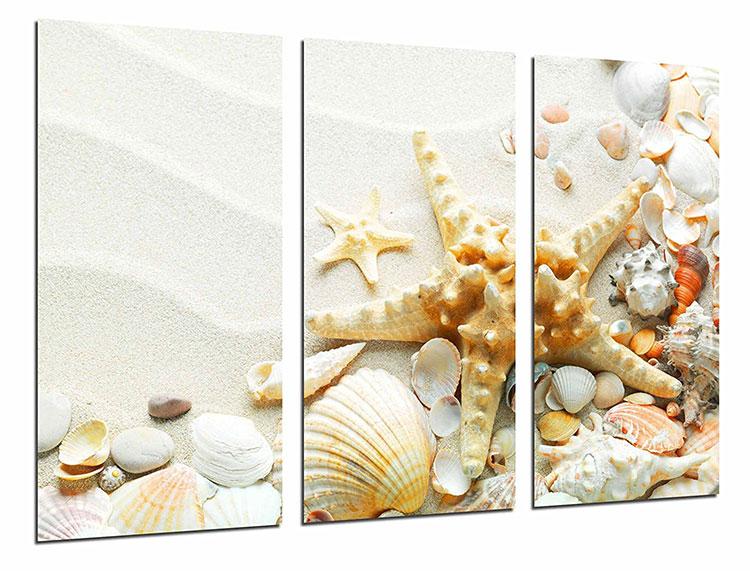 Modello di quadra per casa mare con conchiglie e stelle marine n.04
