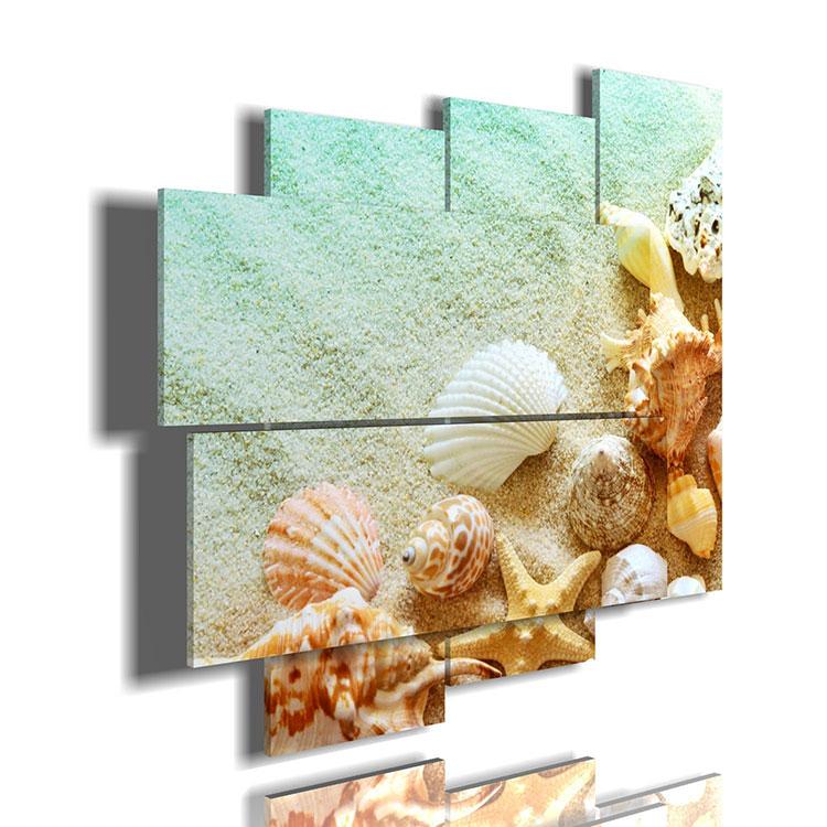 Modello di quadra per casa mare con conchiglie e stelle marine n.05