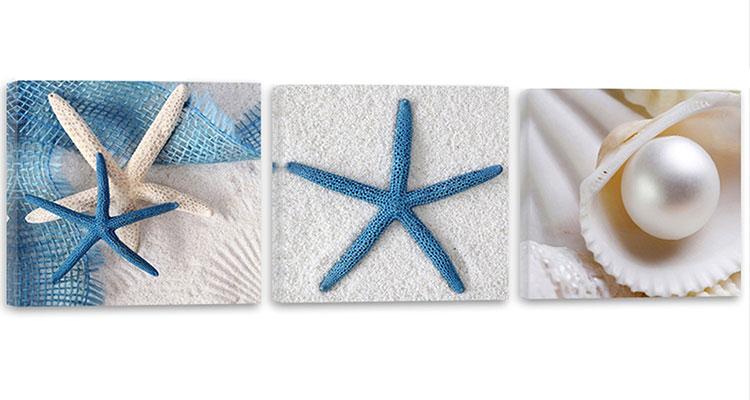 Modello di quadra per casa mare con conchiglie e stelle marine n.09