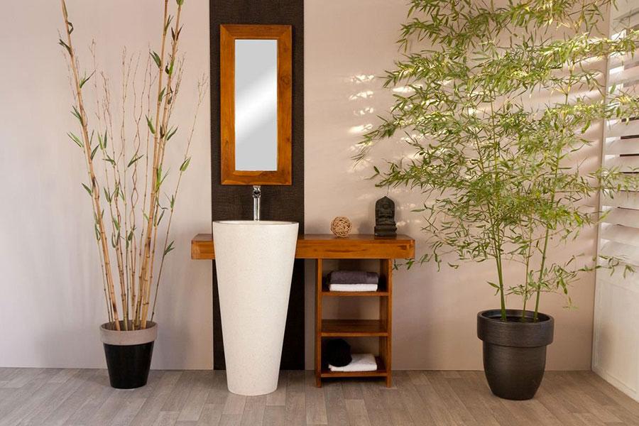 Quali piante scegliere per un bagno Fen Shui 1