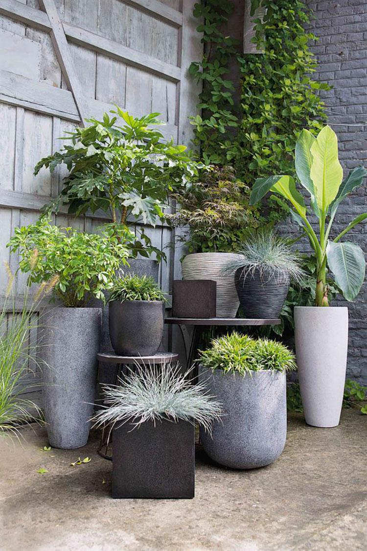 Idee per abbellire un terrazzo con piante e fiori n.3