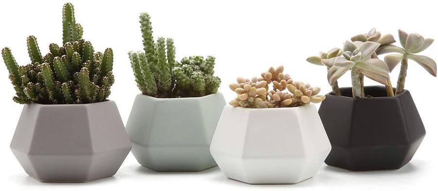 Modello di vaso moderno per piante da interno n.10