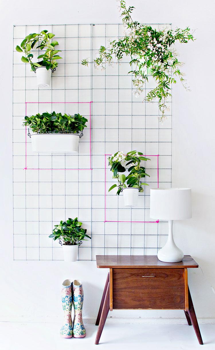 Pareti decorate con piante n.2