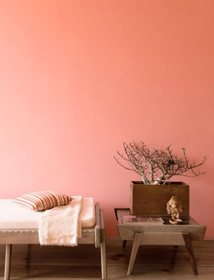 Idee pareti colore salmone 02