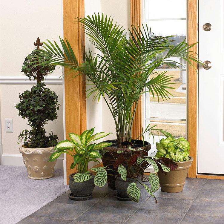 Idee per decorare l'ingresso di casa n.26
