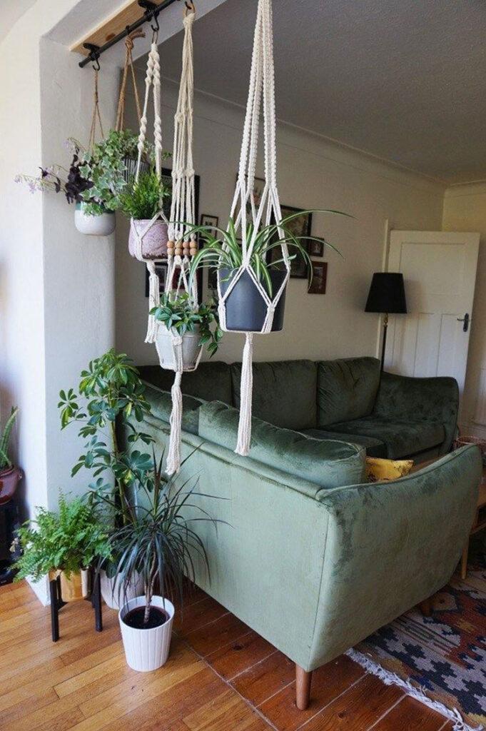 Idee per arredare con piante da soggiorno n.28