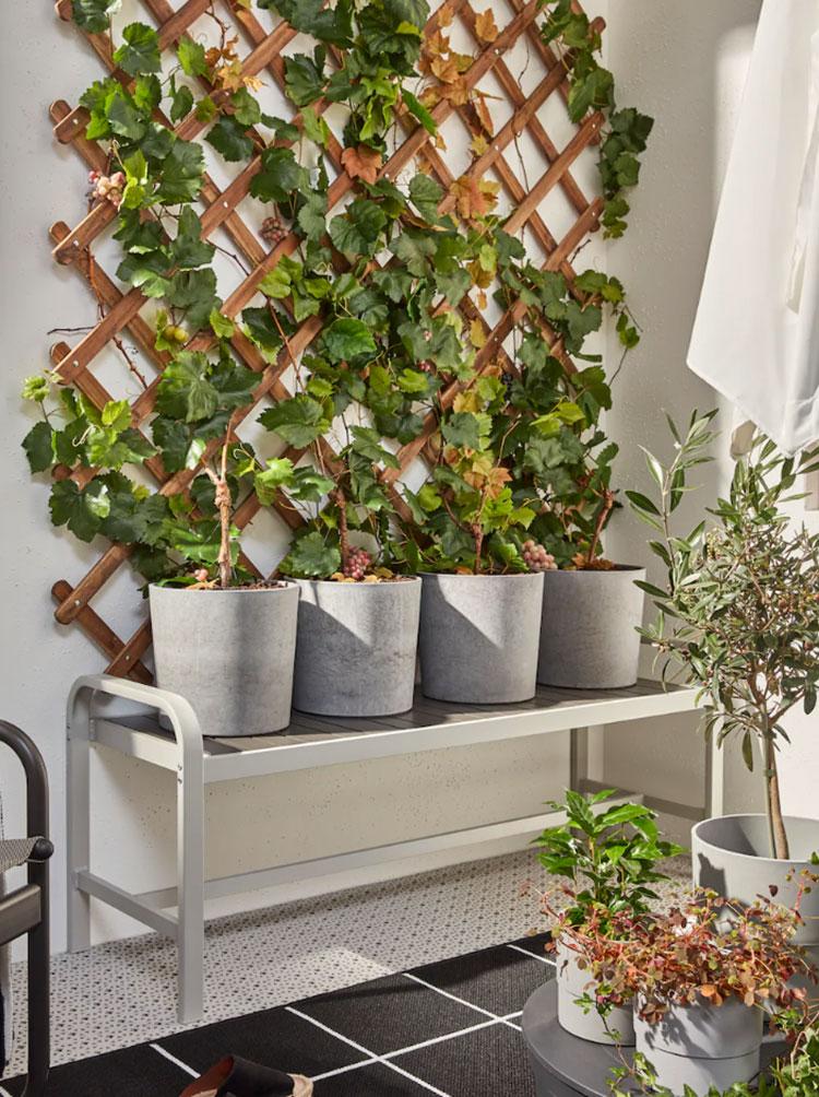Come arredare un terrazzo low cost con le piante n.02