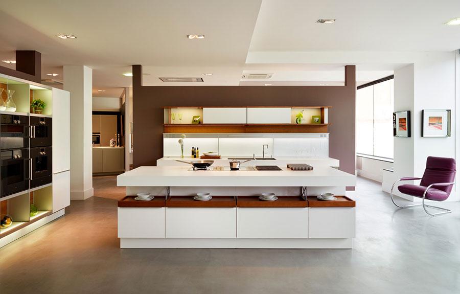 Modello di cucina con isola n.20