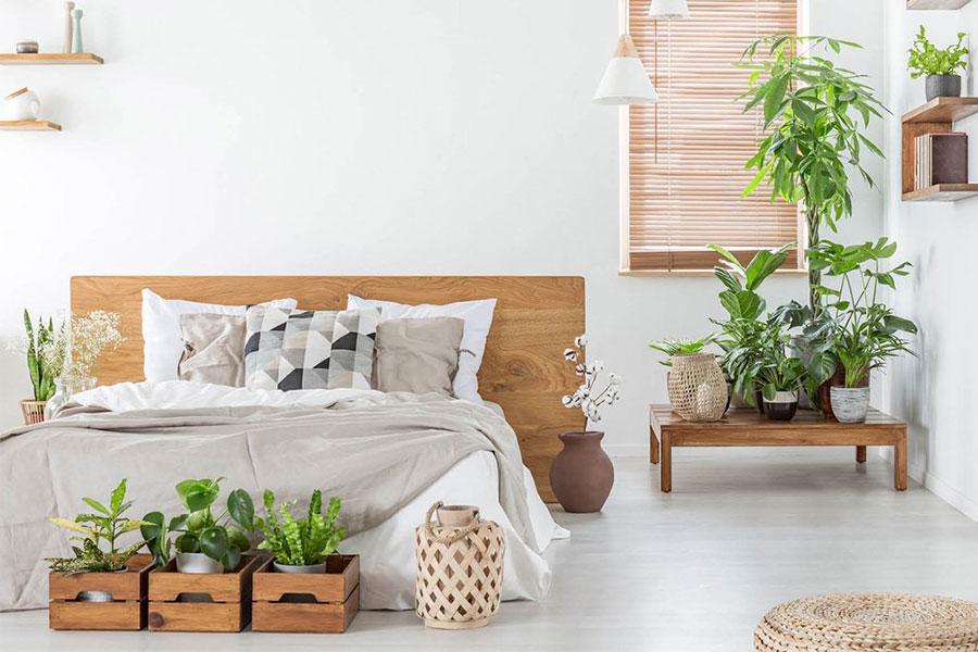 Idee per arredare la camera da letto con le piante n.03