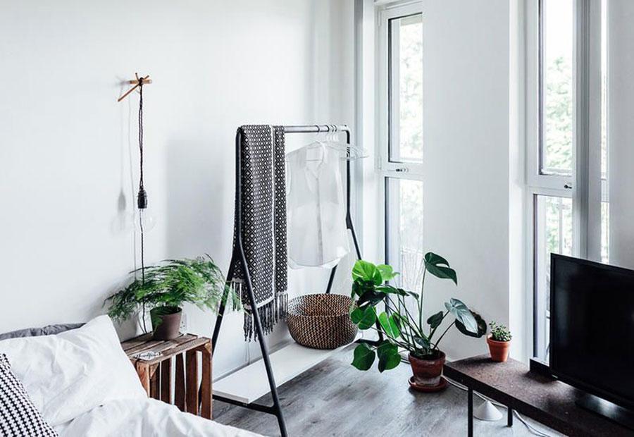 Idee per arredare la camera da letto con le piante n.10