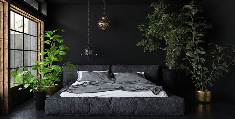 Idee piante per camera da letto